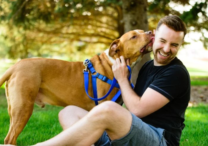 девушки любят мужчин с собаками